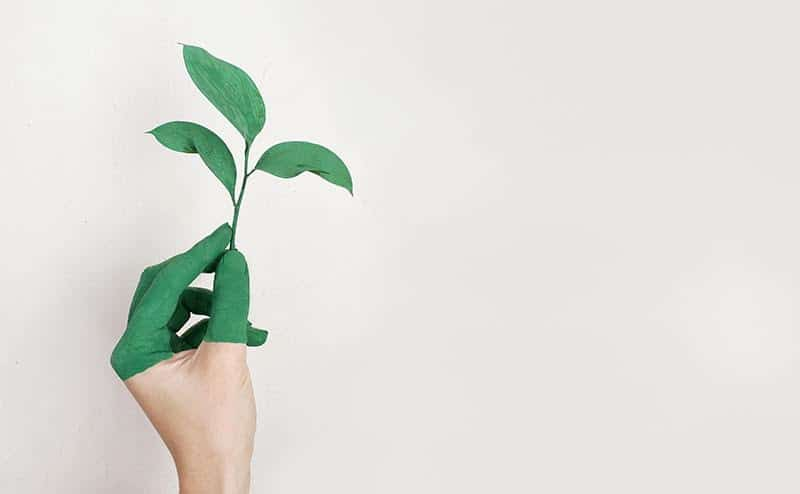 """Nachhaltige Giveaways – """"Grüne Werbung"""" liegt voll im Trend"""